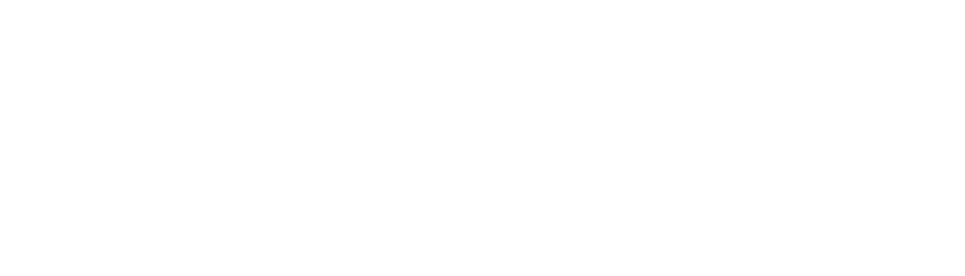 Nemetos - Enabling Digital Evolution